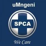 uMgeni SPCA Shop