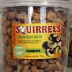 Squirrels Nuts
