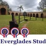 Everglades Stud